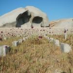 Lavezzi Friedhof1