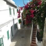 Ibiza Stadt5