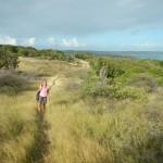 Carpenter Rock Trail2