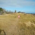 Carpenter Rock Trail4