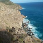 Carpenter Rock Trail6