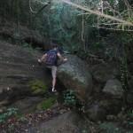 Graveside Trail2