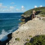 Andrea Green Island