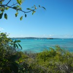 Aussicht Green Island