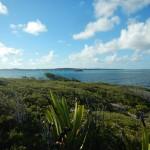 Aussicht Green Island1
