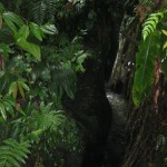 BL Titou Gorge