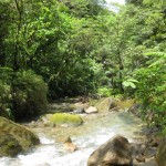 BL Trail Fluss