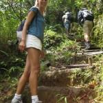 BL Trail2