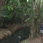 Dominica07