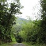 Guadeloupe13