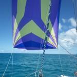 Barbuda & St. Barths04