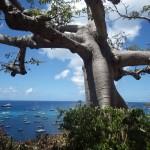 Barbuda & St. Barths20