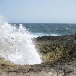Bonaire11